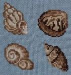 Vier Muscheln